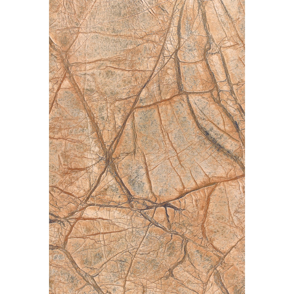 Rainforest Braun 60x90x1,2cm poliert